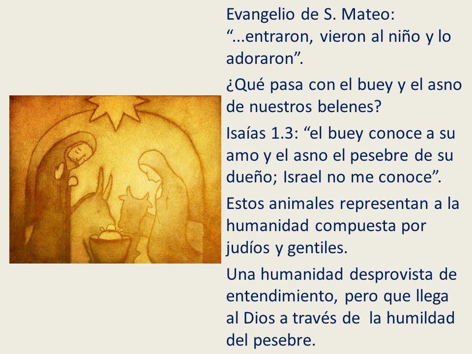Evangelio de S. Mateo:...entraron, vieron al niño y lo adoraron. ¿Qué pasa con el buey y el asno de nuestros belenes? Isaías 1.3: el buey conoce a su