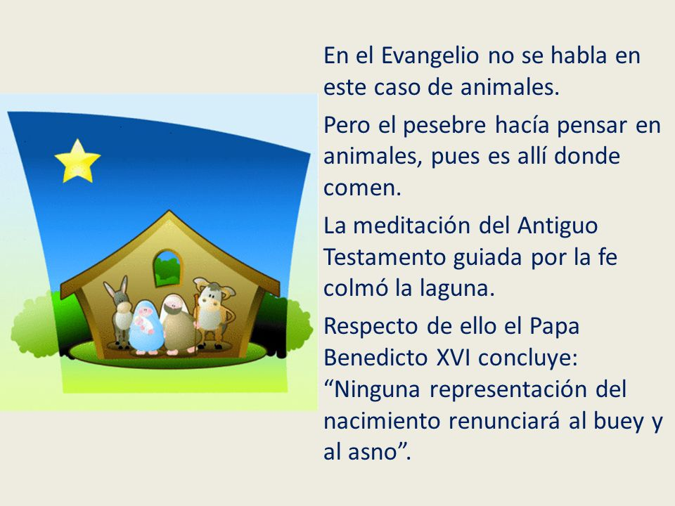 En el Evangelio no se habla en este caso de animales. Pero el pesebre hacía pensar en animales, pues es allí donde comen. La meditación del Antiguo Te