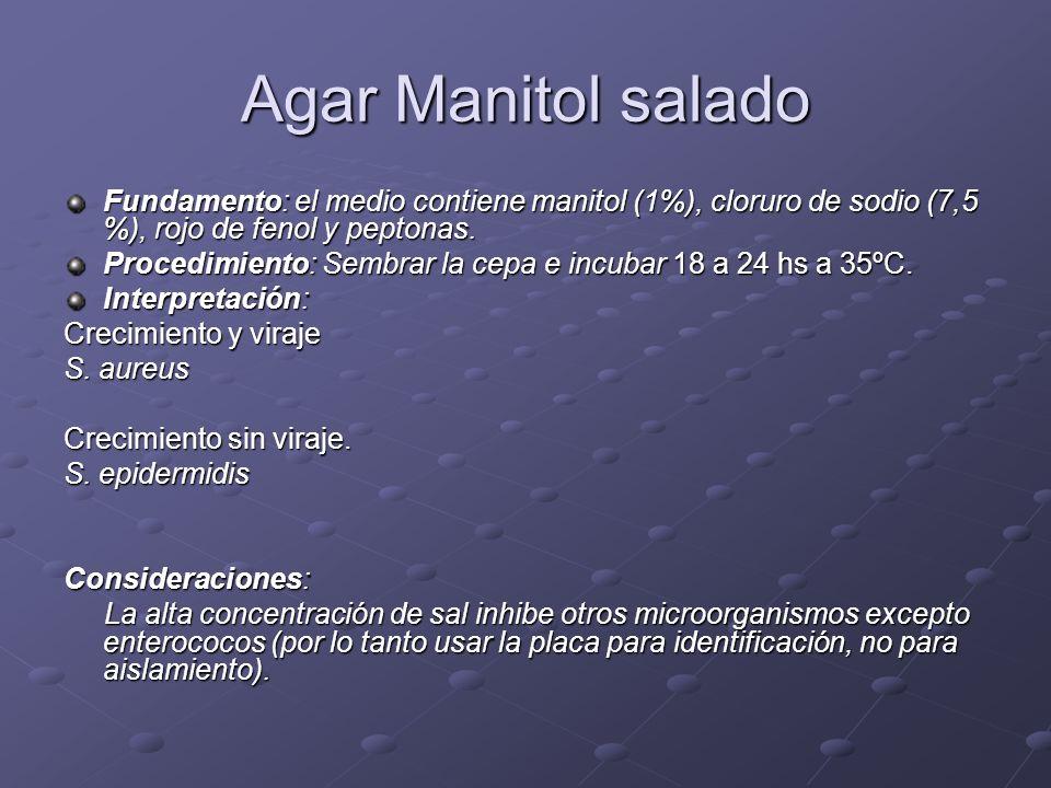Agar Manitol salado Fundamento: el medio contiene manitol (1%), cloruro de sodio (7,5 %), rojo de fenol y peptonas. Procedimiento: Sembrar la cepa e i