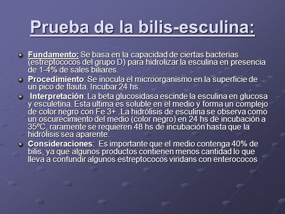 Prueba de la bilis-esculina: Fundamento:Se basa en la capacidad de ciertas bacterias (estreptococos del grupo D) para hidrolizar la esculina en presen