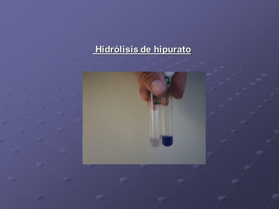 Hidrólisis de hipurato Hidrólisis de hipurato