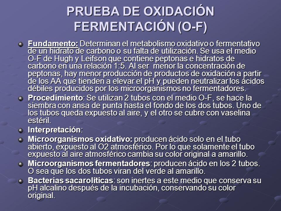PRUEBA DE OXIDACIÓN FERMENTACIÓN (O-F) Fundamento:Determinan el metabolismo oxidativo o fermentativo de un hidrato de carbono o su falta de utilizació