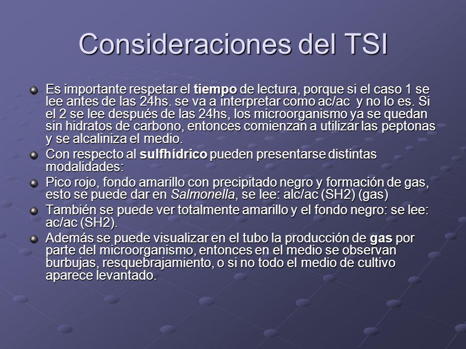 Consideraciones del TSI Es importante respetar el tiempo de lectura, porque si el caso 1 se lee antes de las 24hs. se va a interpretar como ac/ac y no