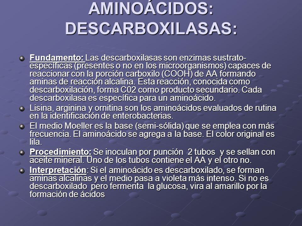 AMINOÁCIDOS: DESCARBOXILASAS: Fundamento: Las descarboxilasas son enzimas sustrato- específicas (presentes o no en los microorganismos) capaces de rea