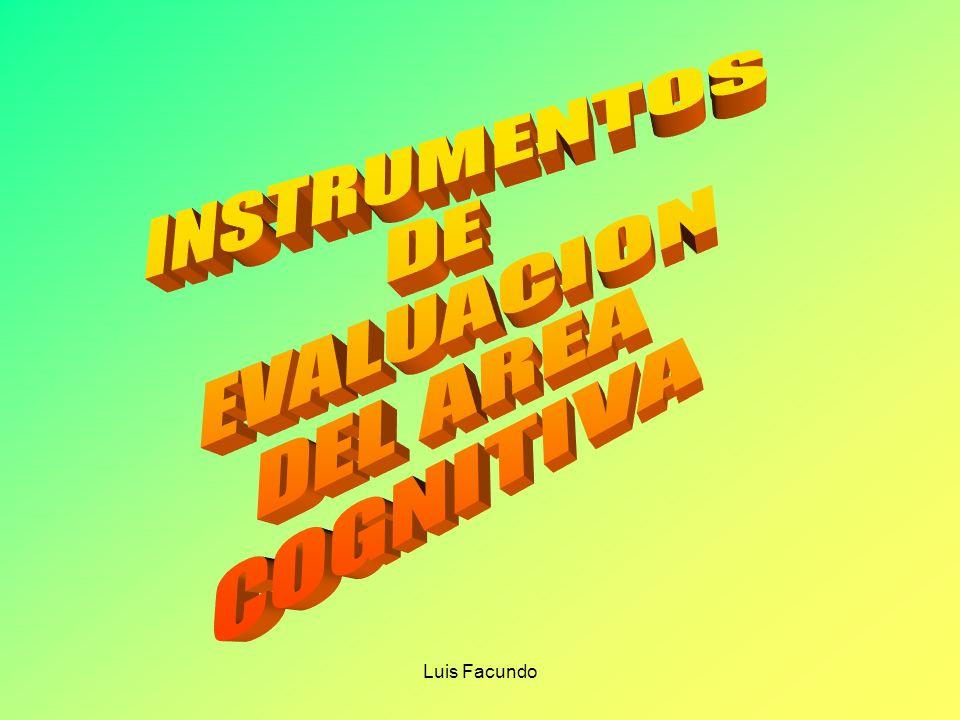 Luis Facundo CAPACIDADES FUNDAMENTALES Son de alto grado de complejidad Se relacionan con las grandes intencionalidades del currículo.