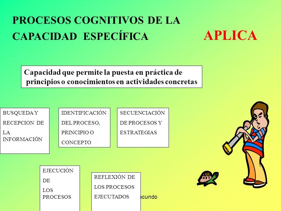 Luis Facundo PROCESOS COGNITIVOS DE LA CAPACIDAD ESPECÍFICA ANALIZA Capacidad que permite dividir el todo en partes con la finalidad de estudiar, expl