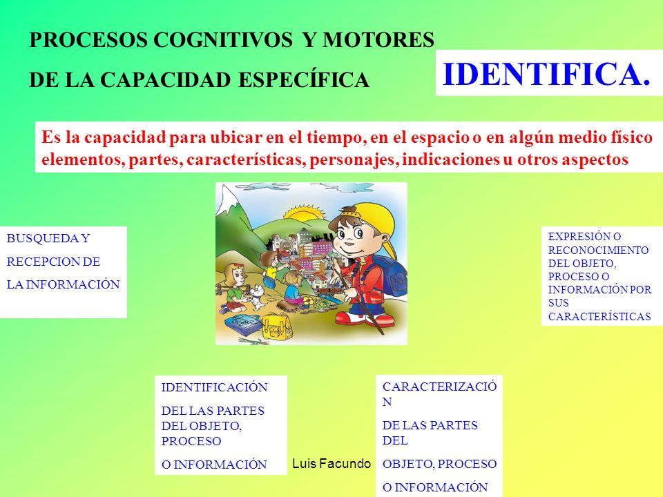 Luis Facundo PROCESOS COGNITIVOS Y MOTORES REALIZA DE LA CAPACIDAD ESPECÍFICA REALIZA Es la capacidad que permite ejecutar un proceso, tarea u operaci