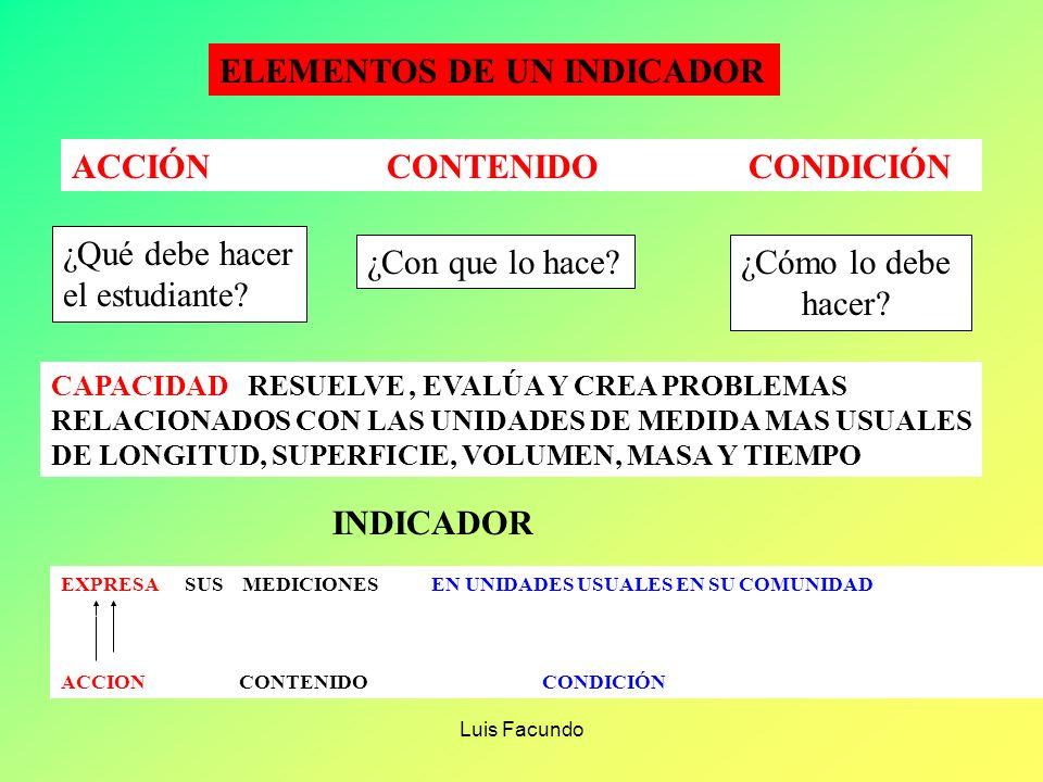Luis Facundo ELABORACIÓN DE LOS INDICADORES Los indicadores se derivan de una análisis de las capacidades de Área y Específicas seleccionadas Debe seg