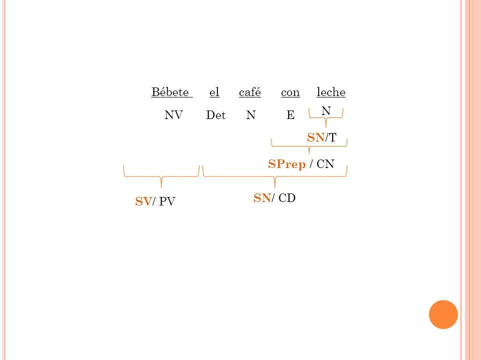 Bébete el café con leche SN /T SPrep / CN SN / CD SV / PV NV Det N E N