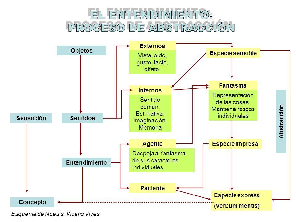 Sensación Concepto Objetos Sentidos Entendimiento Externos Internos Agente Paciente Especie sensible Fantasma Especie impresa Especie expresa (Verbum