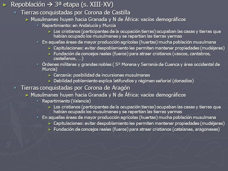 Repoblación 3ª etapa (s. XIII-XV) Repoblación 3ª etapa (s. XIII-XV) Tierras conquistadas por Corona de Castilla Tierras conquistadas por Corona de Cas