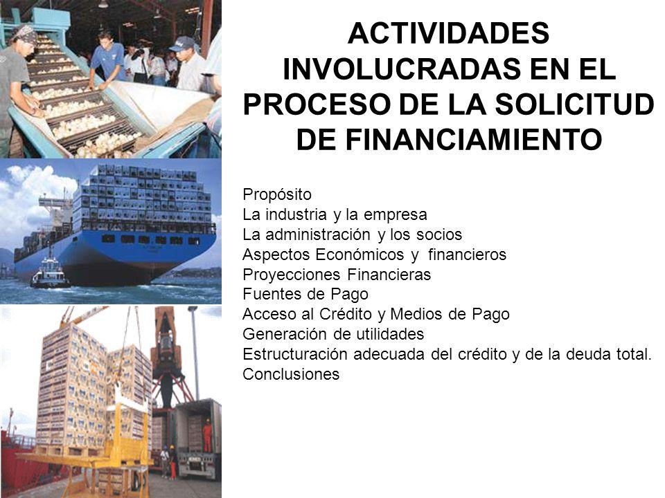 ACTIVIDADES INVOLUCRADAS EN EL PROCESO DE LA SOLICITUD DE FINANCIAMIENTO Propósito La industria y la empresa La administración y los socios Aspectos E