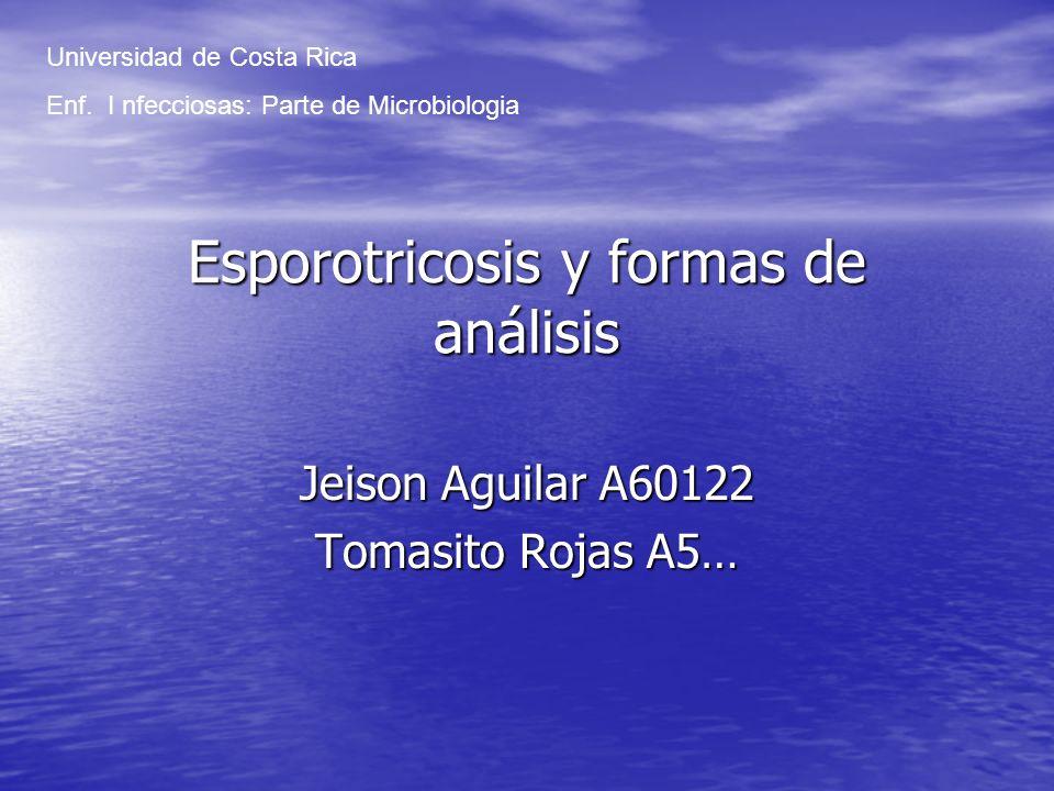 Esporotricosis y formas de análisis Jeison Aguilar A60122 Tomasito Rojas A5… Universidad de Costa Rica Enf. I nfecciosas: Parte de Microbiologia