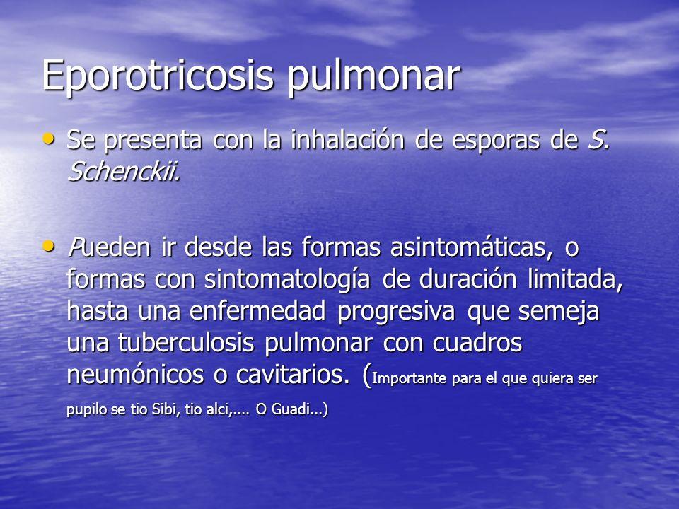 Eporotricosis pulmonar Se presenta con la inhalación de esporas de S. Schenckii. Se presenta con la inhalación de esporas de S. Schenckii. Pueden ir d