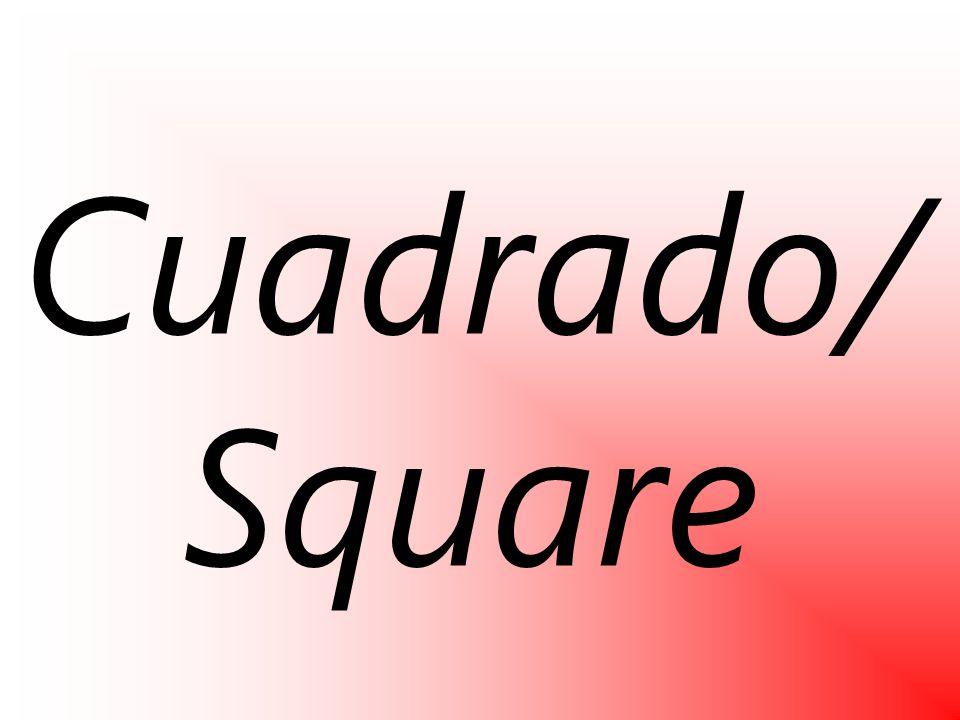 Cuadrado/ Square