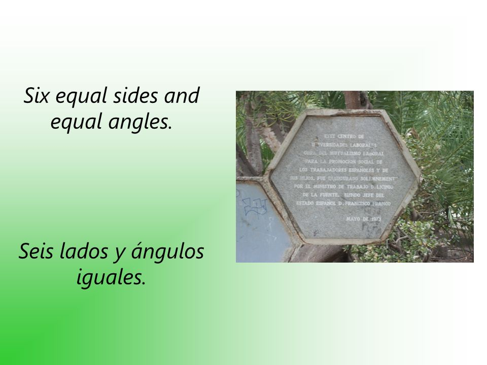Six equal sides and equal angles. Seis lados y ángulos iguales.