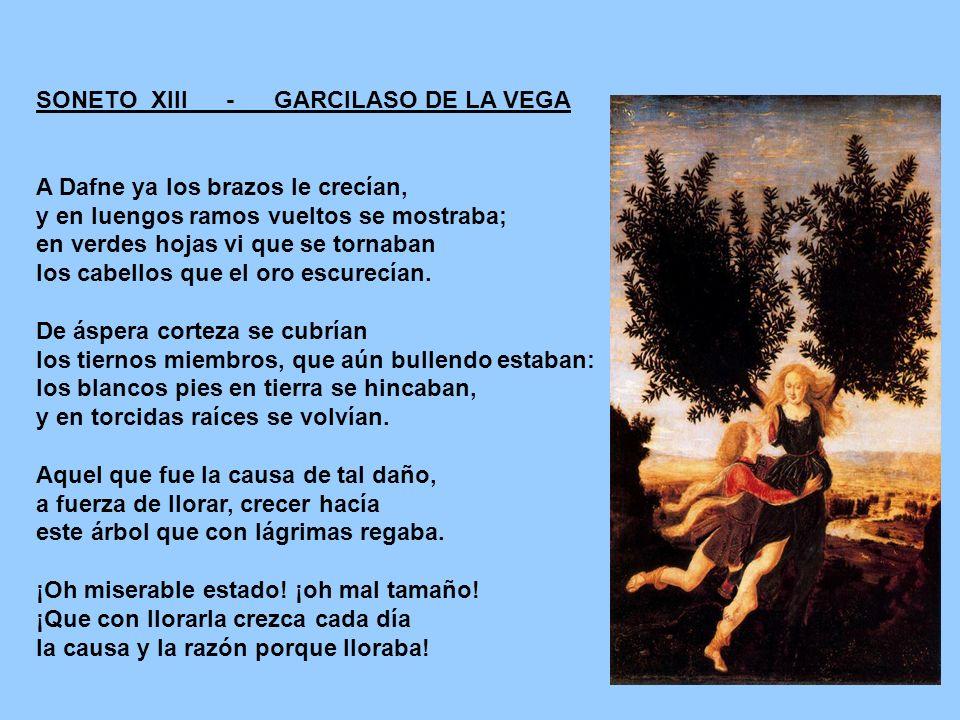 SONETO XIII - GARCILASO DE LA VEGA A Dafne ya los brazos le crecían, y en luengos ramos vueltos se mostraba; en verdes hojas vi que se tornaban los ca