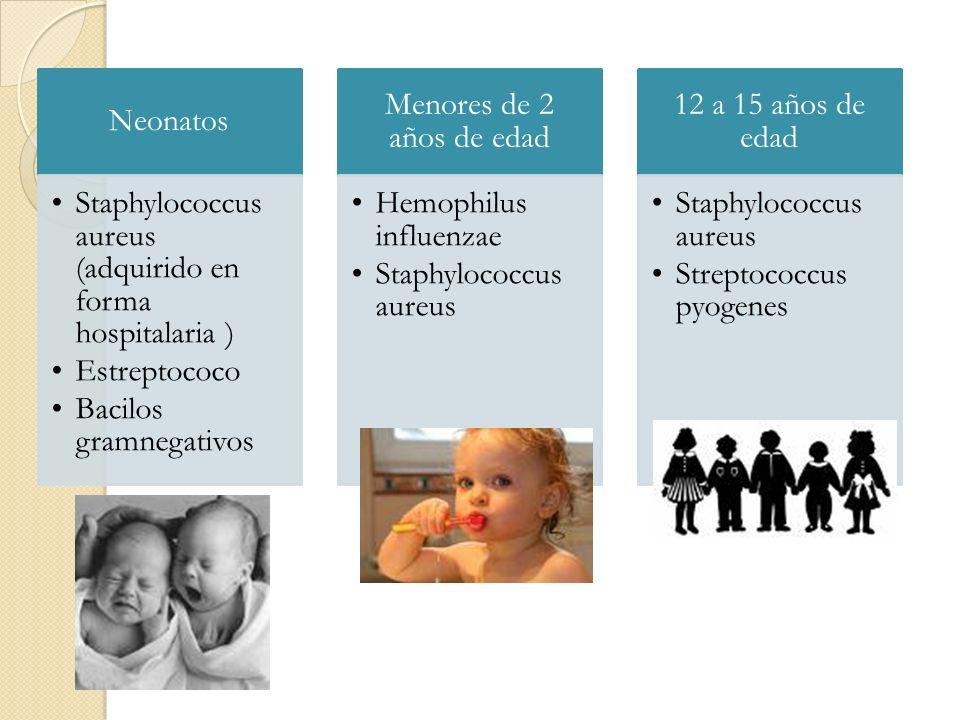 Neonatos Staphylococcus aureus (adquirido en forma hospitalaria ) Estreptococo Bacilos gramnegativos Menores de 2 años de edad Hemophilus influenzae S