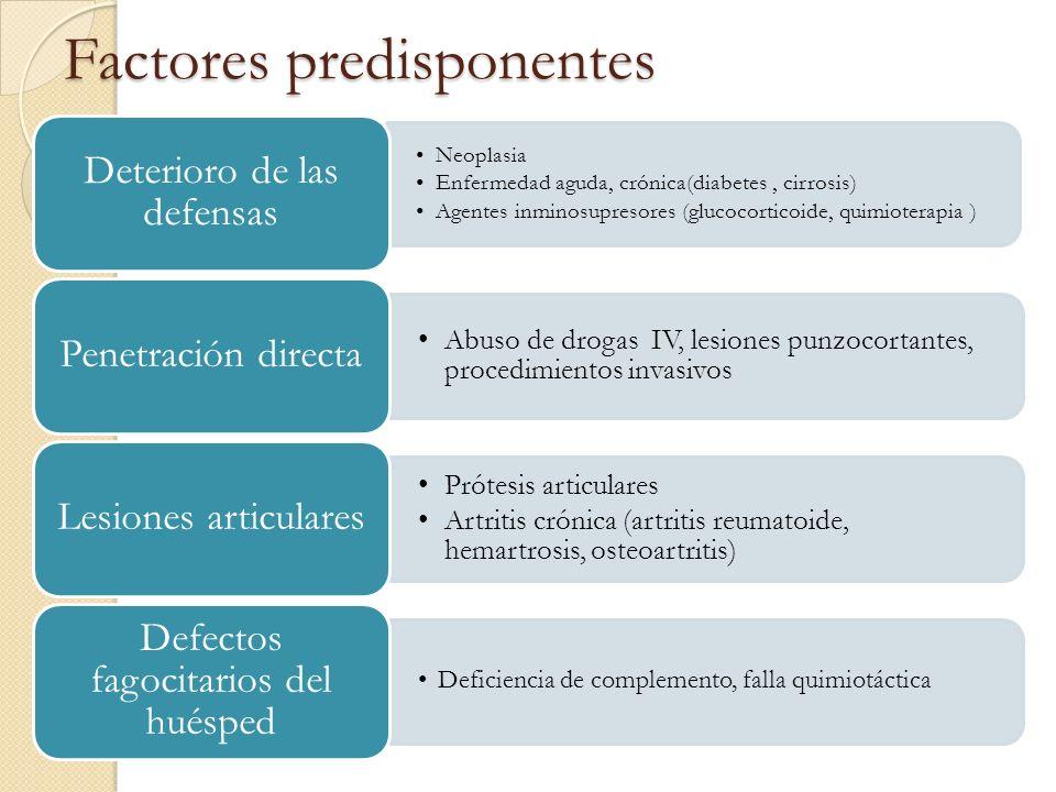 Factores predisponentes Neoplasia Enfermedad aguda, crónica(diabetes, cirrosis) Agentes inminosupresores (glucocorticoide, quimioterapia ) Deterioro d