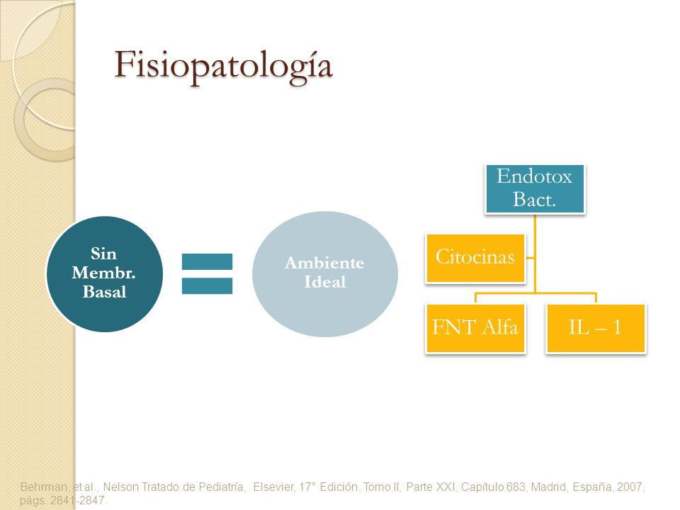 Sin Membr. Basal Ambiente Ideal Endotox Bact. FNT AlfaIL – 1 Citocinas Behrman, et al., Nelson Tratado de Pediatría, Elsevier, 17° Edición, Tomo II, P