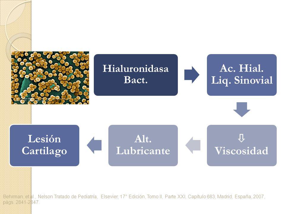 Hialuronidasa Bact. Ac. Hial. Liq. Sinovial Viscosidad Alt. Lubricante Lesión Cartilago Behrman, et al., Nelson Tratado de Pediatría, Elsevier, 17° Ed