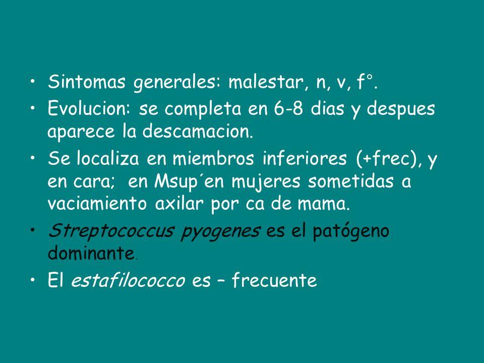 Sintomas generales: malestar, n, v, f°. Evolucion: se completa en 6-8 dias y despues aparece la descamacion. Se localiza en miembros inferiores (+frec