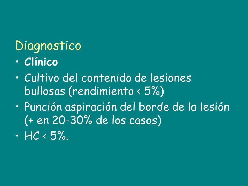 Diagnostico Clínico Cultivo del contenido de lesiones bullosas (rendimiento < 5%) Punción aspiración del borde de la lesión (+ en 20-30% de los casos)