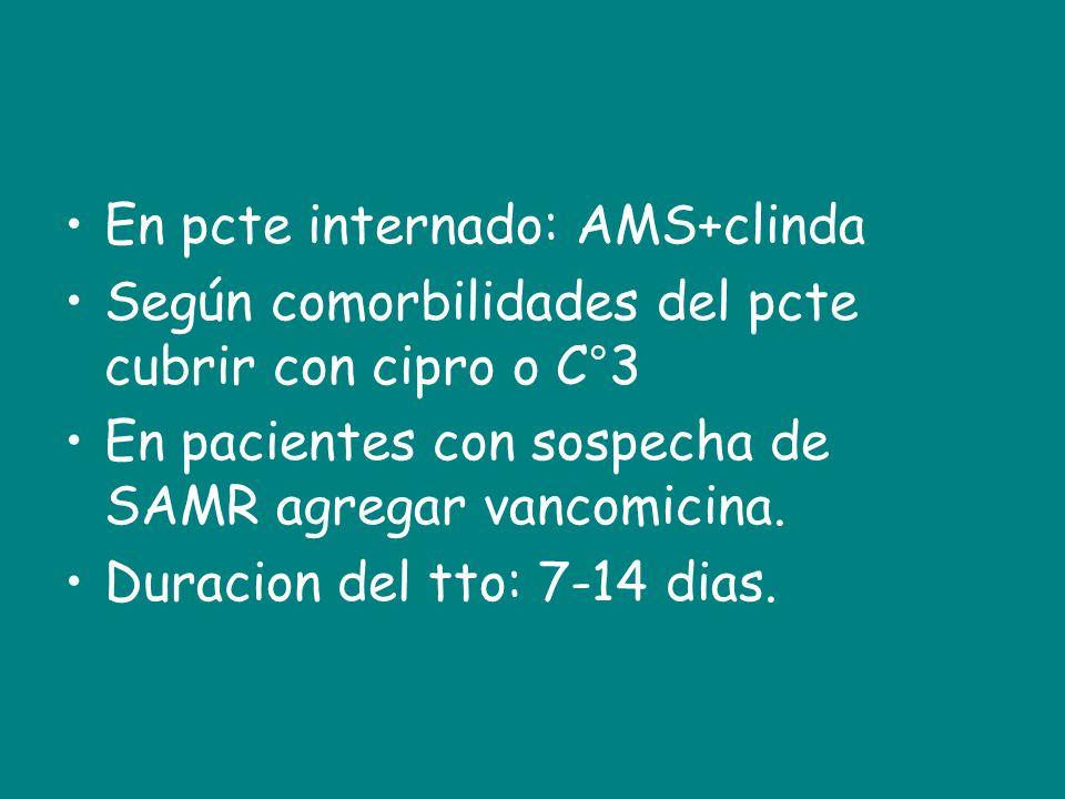 En pcte internado: AMS+clinda Según comorbilidades del pcte cubrir con cipro o C°3 En pacientes con sospecha de SAMR agregar vancomicina. Duracion del