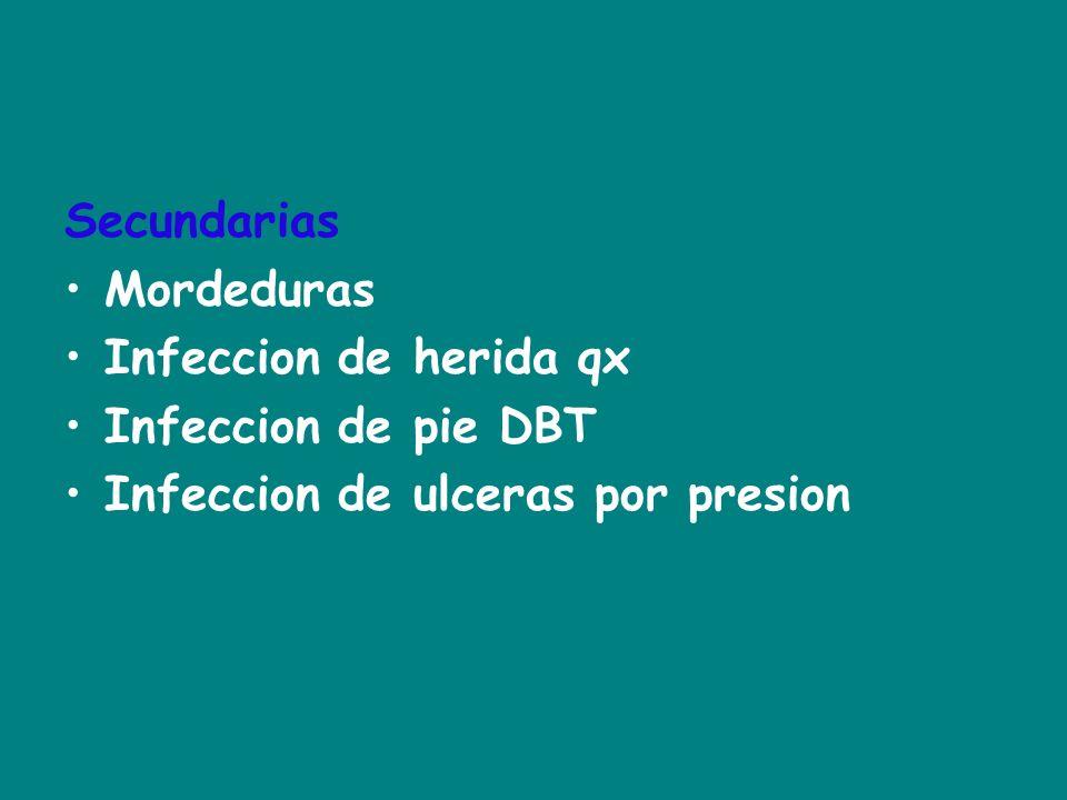 Secundarias Mordeduras Infeccion de herida qx Infeccion de pie DBT Infeccion de ulceras por presion