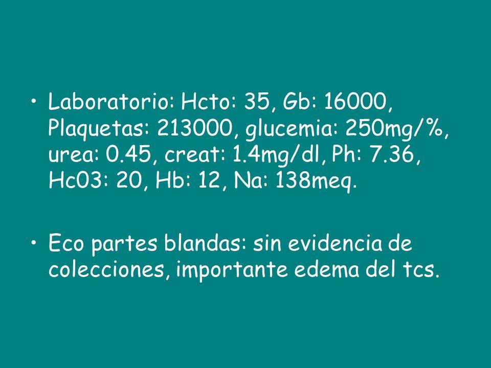 Laboratorio: Hcto: 35, Gb: 16000, Plaquetas: 213000, glucemia: 250mg/%, urea: 0.45, creat: 1.4mg/dl, Ph: 7.36, Hc03: 20, Hb: 12, Na: 138meq. Eco parte