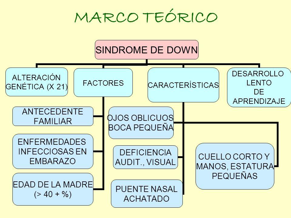 MARCO TEÓRICO SINDROME DE DOWN ALTERACIÓN GENÉTICA (X 21) FACTORES ANTECEDENTE FAMILIAR ENFERMEDADES INFECCIOSAS EN EMBARAZO EDAD DE LA MADRE (> 40 +