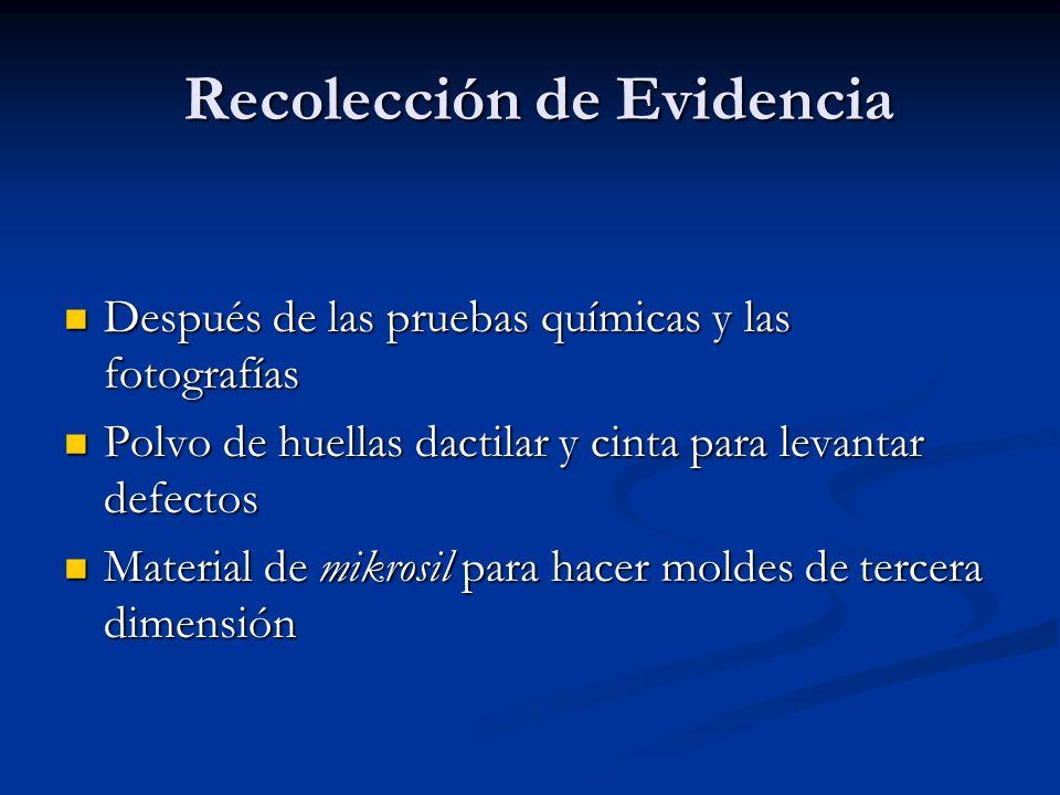 Recolección de Evidencia Recolección de Evidencia Después de las pruebas químicas y las fotografías Después de las pruebas químicas y las fotografías