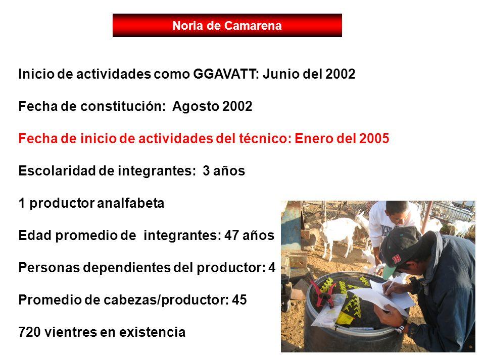 Inicio de actividades como GGAVATT: Junio del 2002 Fecha de constitución: Agosto 2002 Fecha de inicio de actividades del técnico: Enero del 2005 Escol