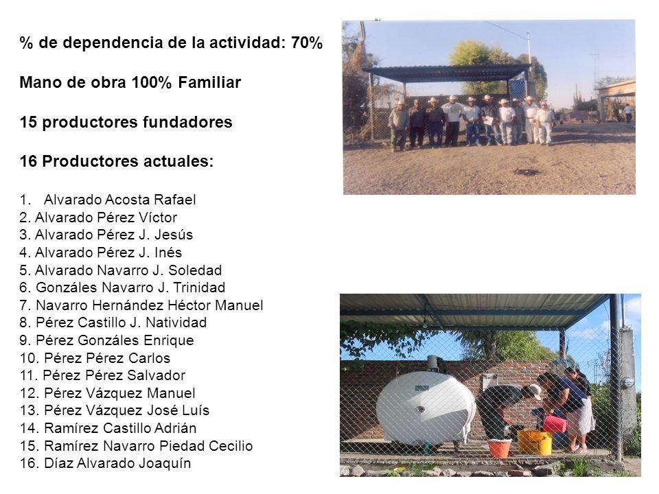 % de dependencia de la actividad: 70% Mano de obra 100% Familiar 15 productores fundadores 16 Productores actuales: 1.Alvarado Acosta Rafael 2. Alvara
