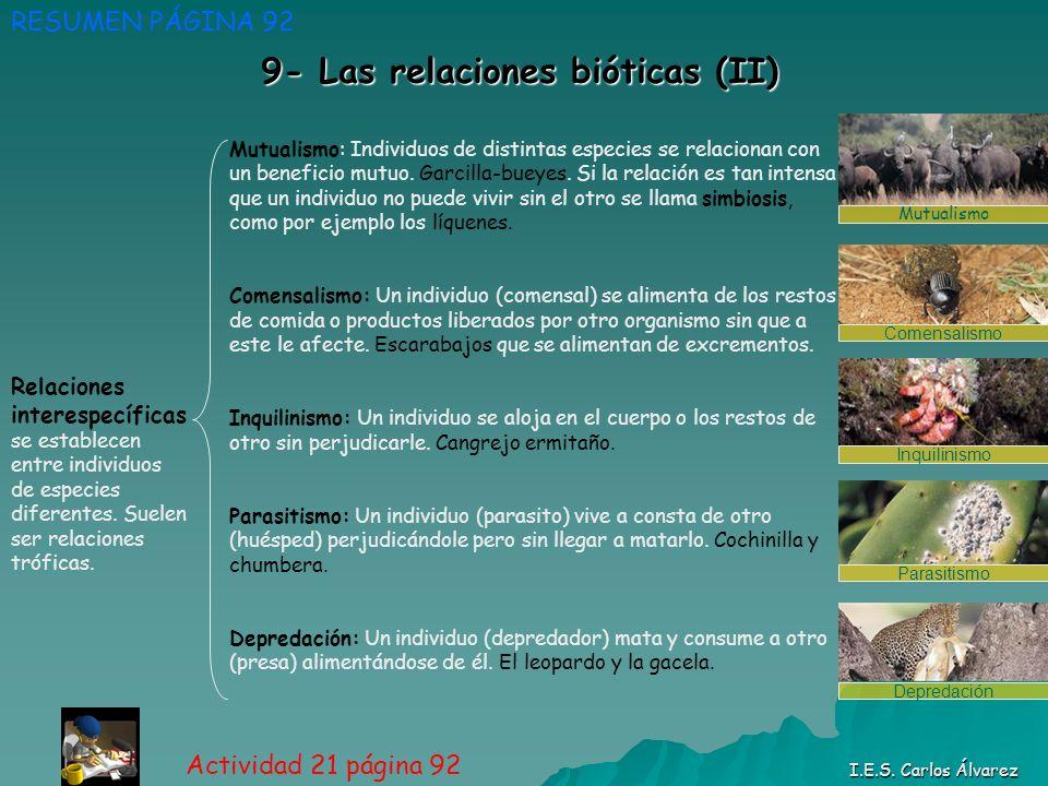 9- Las relaciones bióticas (II) RESUMEN PÁGINA 92 Actividad 21 página 92 I.E.S. Carlos Álvarez Relaciones interespecíficas se establecen entre individ