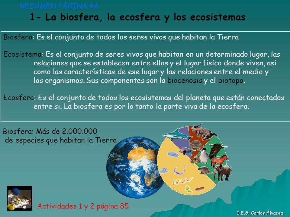 RESUMEN PÁGINA 84 Biosfera: Es el conjunto de todos los seres vivos que habitan la Tierra Ecosistema: Es el conjunto de seres vivos que habitan en un