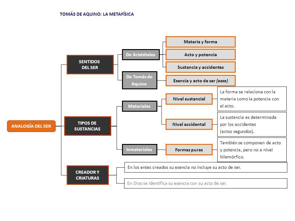 ESENCIA TOMÁS DE AQUINO: LA METAFÍSICA FORMA ACTO Esse ESENCIA FORMA PURA ACTO ESTRUCTURA ONTOLÓGICA SUSTANCIAS INMATERIALESSUSTANCIAS MATERIALES POTENCIA Esse POTENCIA ACTO POTENCIA MATERIA