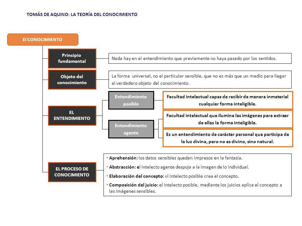 TOMÁS DE AQUINO: LA TEORÍA DEL CONOCIMIENTO LA SECUENCIA COGNOSCITIVA SEGÚN TOMÁS DE AQUINO.......