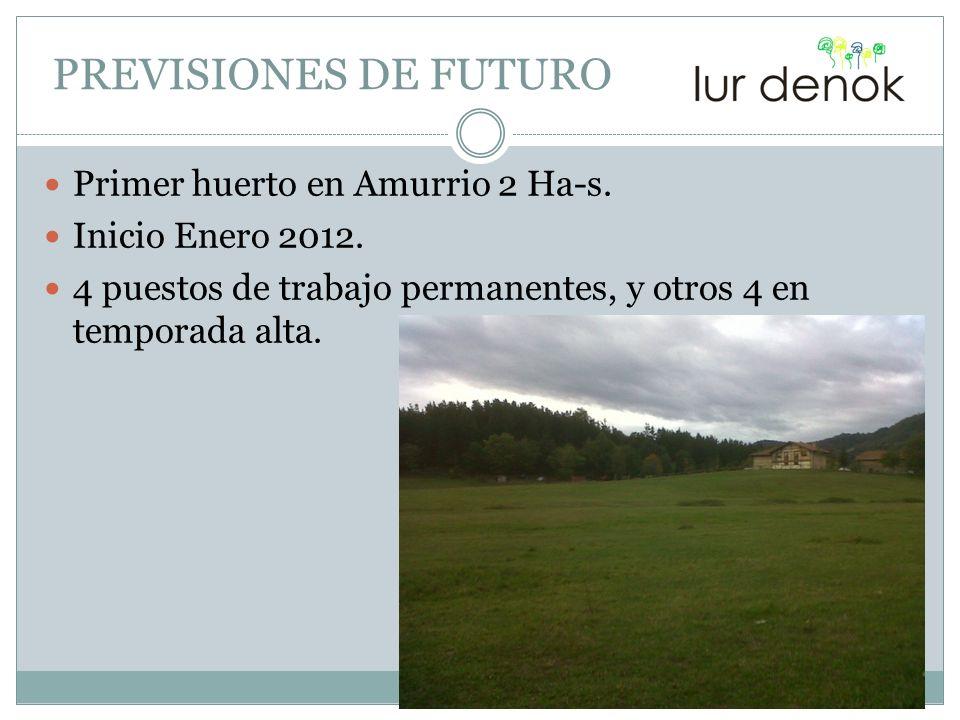 Primer huerto en Amurrio 2 Ha-s. Inicio Enero 2012. 4 puestos de trabajo permanentes, y otros 4 en temporada alta. PREVISIONES DE FUTURO