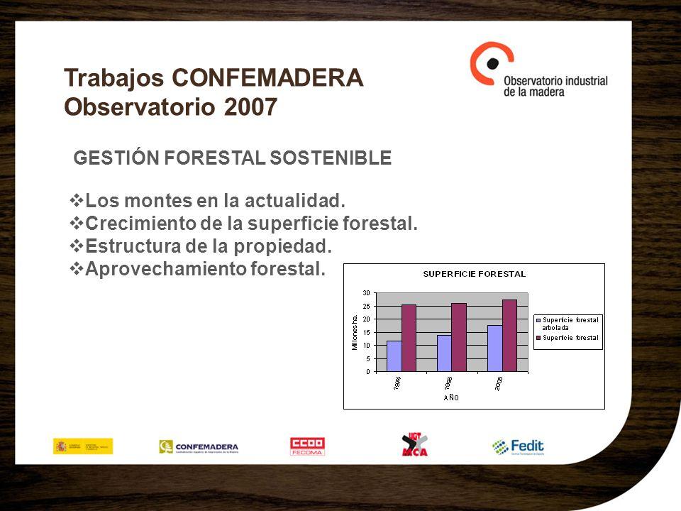 Trabajos CONFEMADERA Observatorio 2007 GESTIÓN FORESTAL SOSTENIBLE Los montes en la actualidad.
