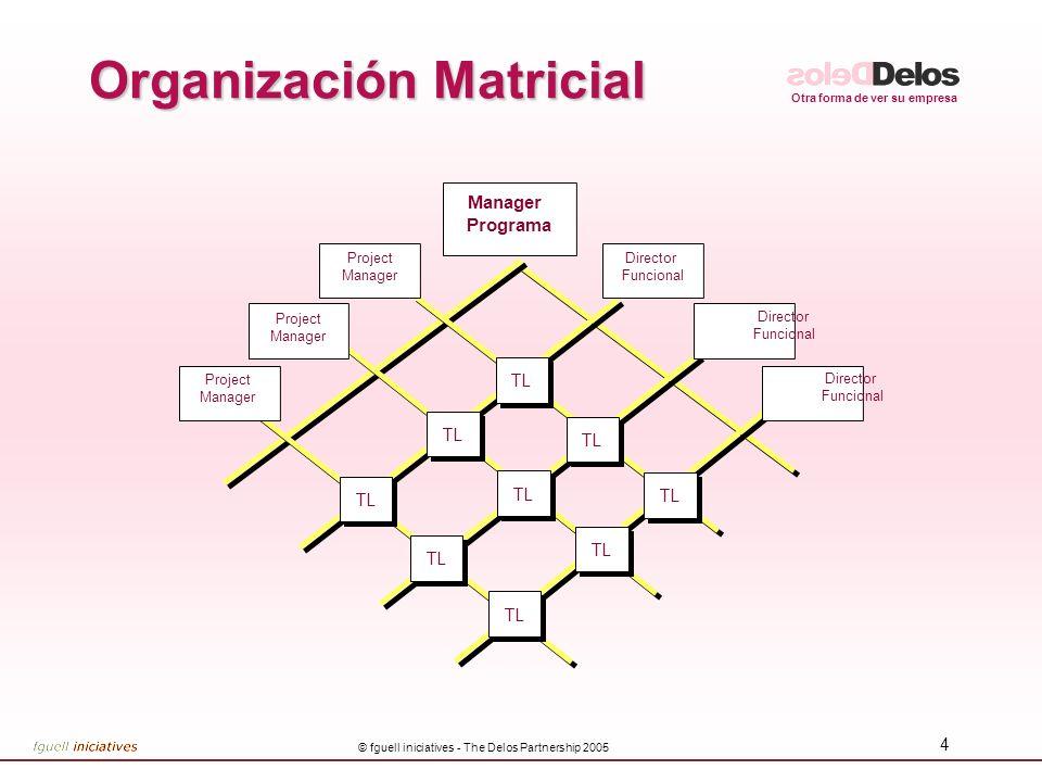 Otra forma de ver su empresa © fguell iniciatives - The Delos Partnership 2005 4 Organización Matricial Project Manager Project Manager Programa Proje