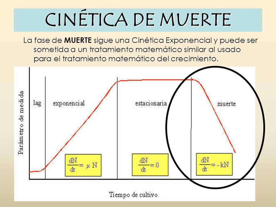 CINÉTICA DE MUERTE La fase de MUERTE sigue una Cinética Exponencial y puede ser sometida a un tratamiento matemático similar al usado para el tratamie