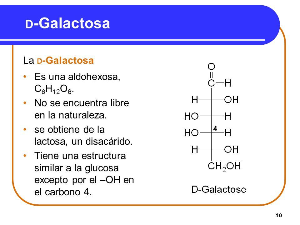10 D -Galactosa La D -Galactosa Es una aldohexosa, C 6 H 12 O 6. No se encuentra libre en la naturaleza. se obtiene de la lactosa, un disacárido. Tien