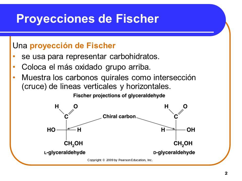 2 Proyecciones de Fischer Una proyección de Fischer se usa para representar carbohidratos. Coloca el más oxidado grupo arriba. Muestra los carbonos qu