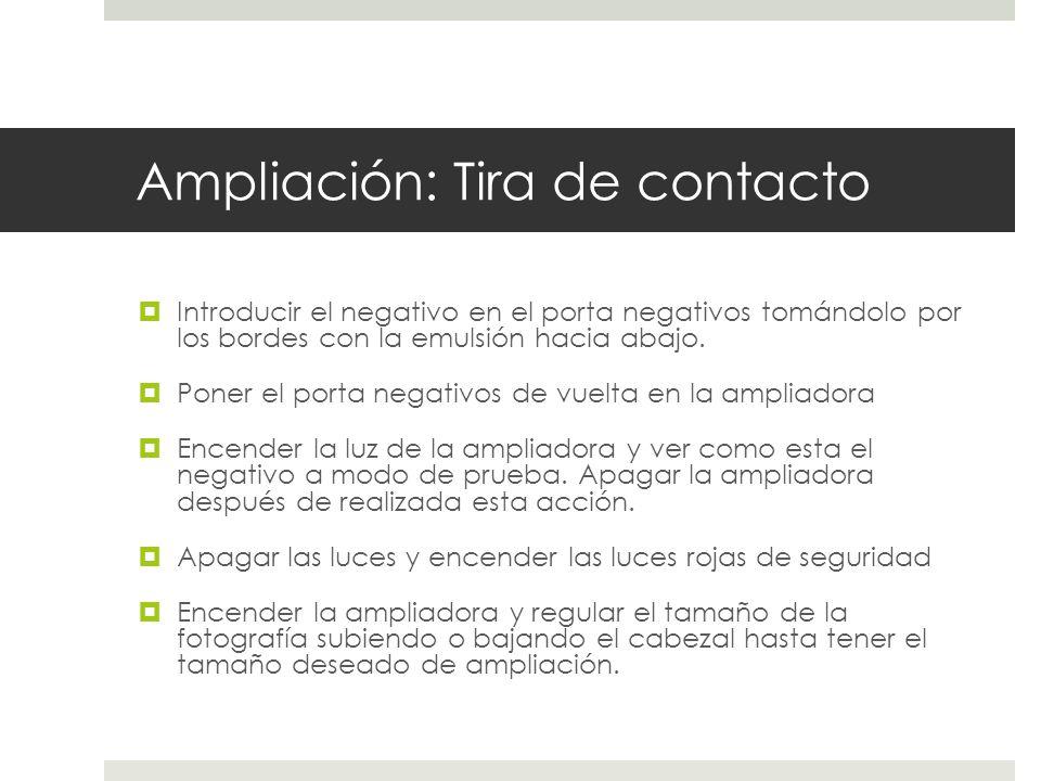 Ampliación: Tira de contacto Introducir el negativo en el porta negativos tomándolo por los bordes con la emulsión hacia abajo. Poner el porta negativ