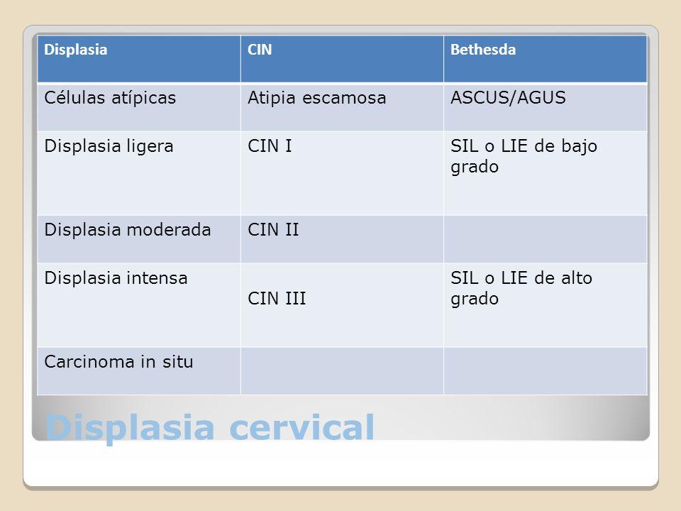 Displasia cervical DisplasiaCINBethesda Células atípicasAtipia escamosaASCUS/AGUS Displasia ligeraCIN ISIL o LIE de bajo grado Displasia moderadaCIN I
