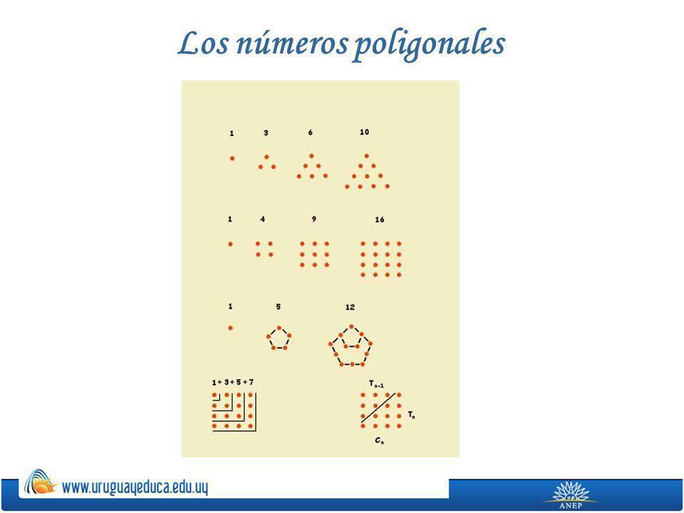 Los números poligonales