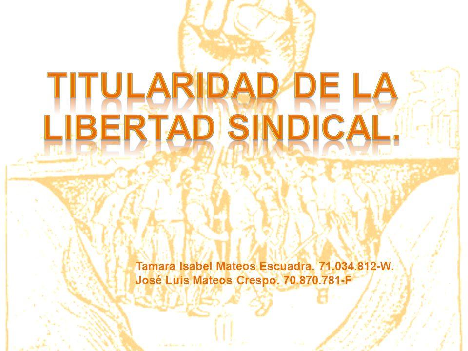 Artículo 28 Constitución Española: 1.Todos tienen derecho a sindicarse libremente.