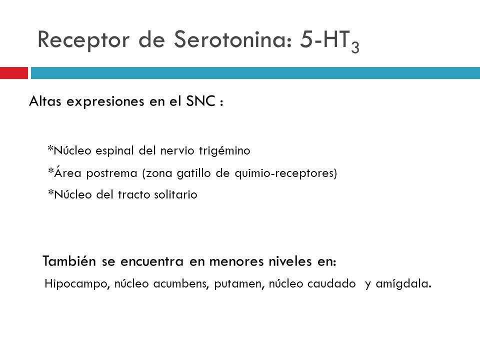 Receptor de Serotonina: 5-HT 3 Altas expresiones en el SNC : *Núcleo espinal del nervio trigémino *Área postrema (zona gatillo de quimio-receptores) *