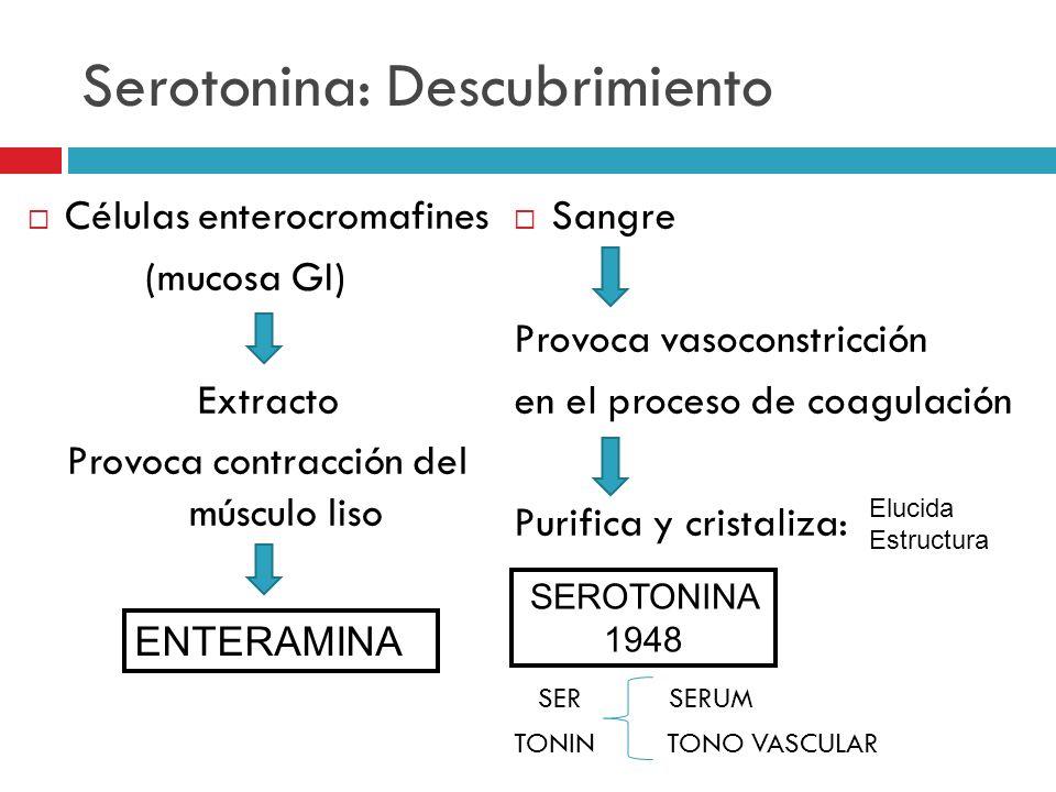Serotonina: Descubrimiento Células enterocromafines (mucosa GI) Extracto Provoca contracción del músculo liso Sangre Provoca vasoconstricción en el pr